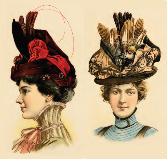 Millinery & Hat Making Historic Books on CD